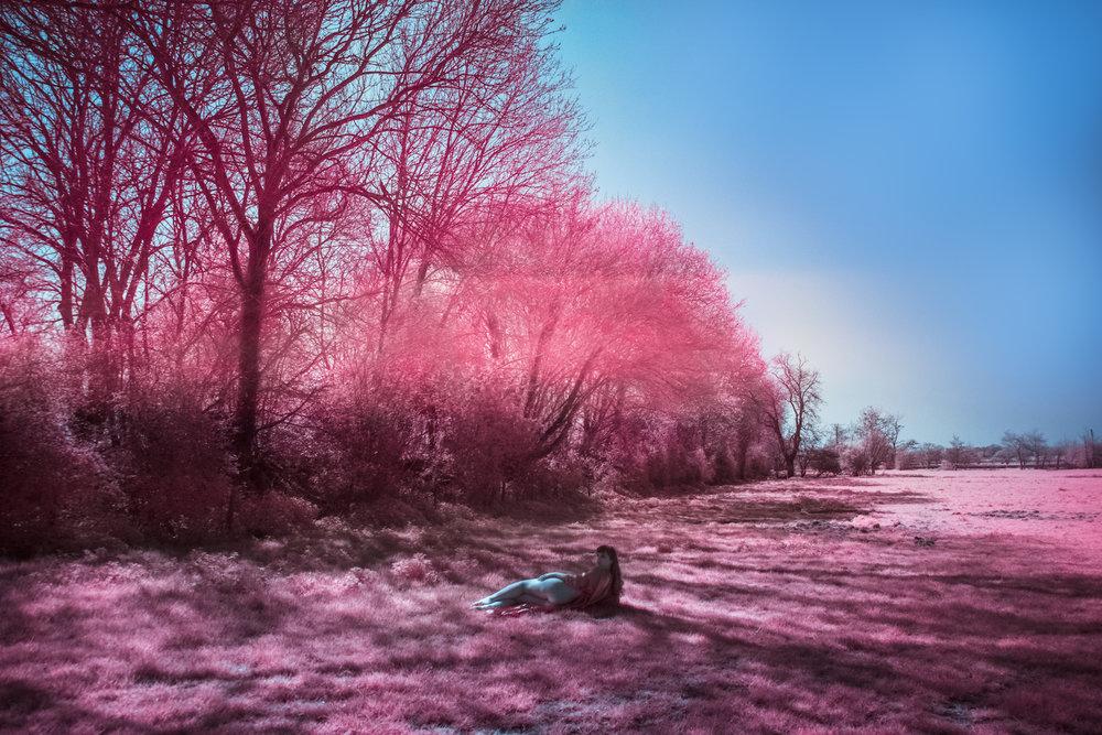 infraredvenus.jpg