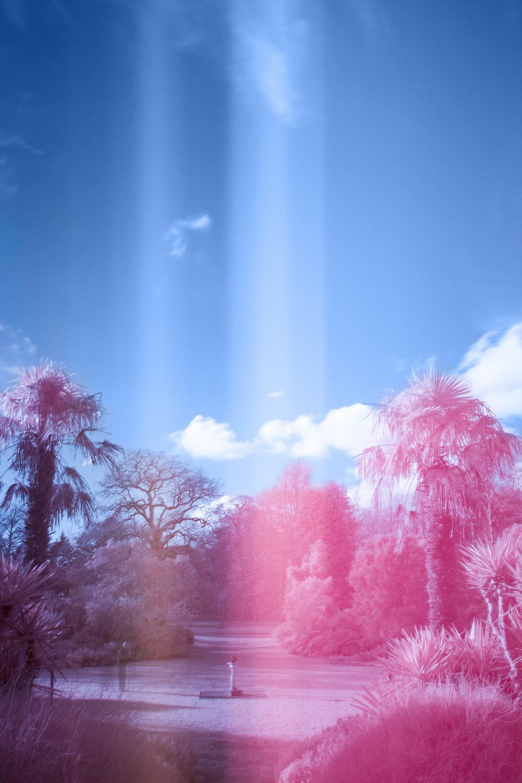 infraredkewgardens2.jpg
