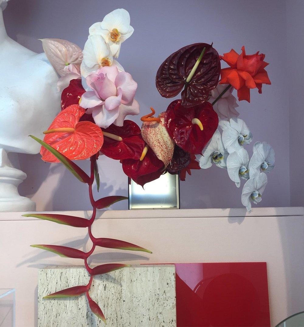 30anthuriums-glossier-master1050.jpg