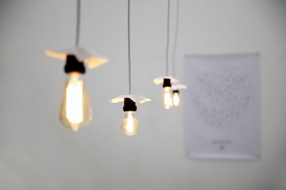 LightsSoft_0752.jpg