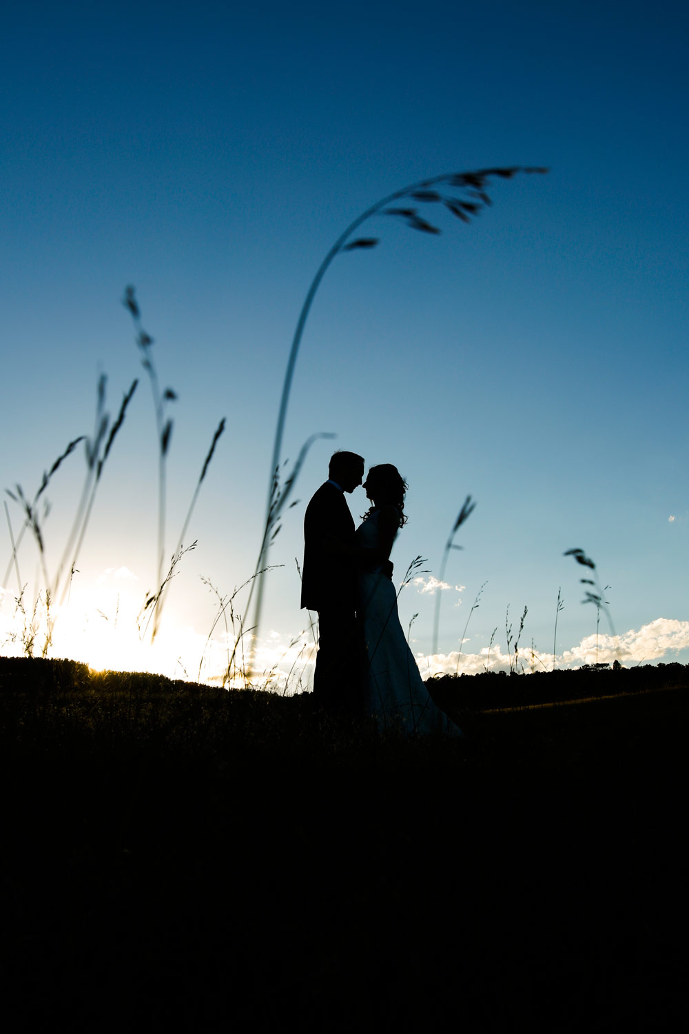 spruce-mountain-ranch-wedding-denver-ruthie-hauge-photography-larkspur-field.jpg