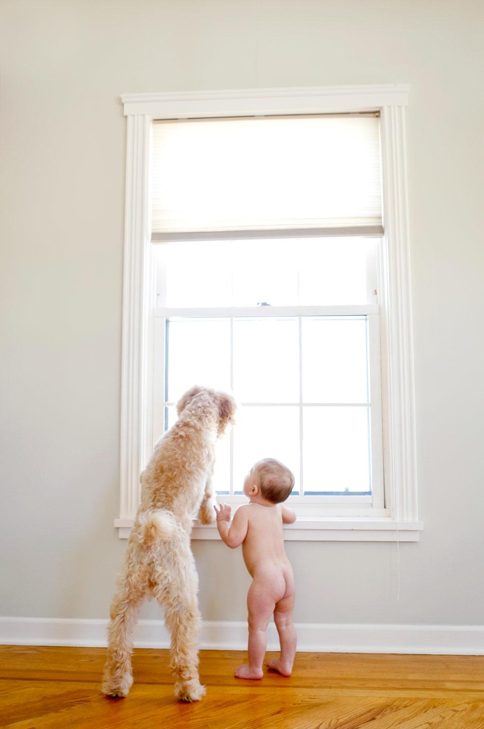 dog-baby-lifestyle-candid-documentary-portrait-ruthie-hauge-photography-geneva.jpg