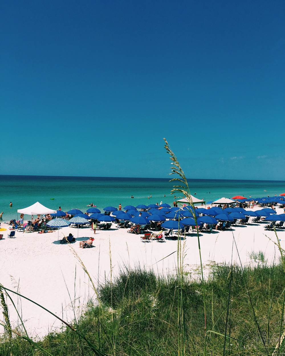 The Beautiful Seagrove Beach!