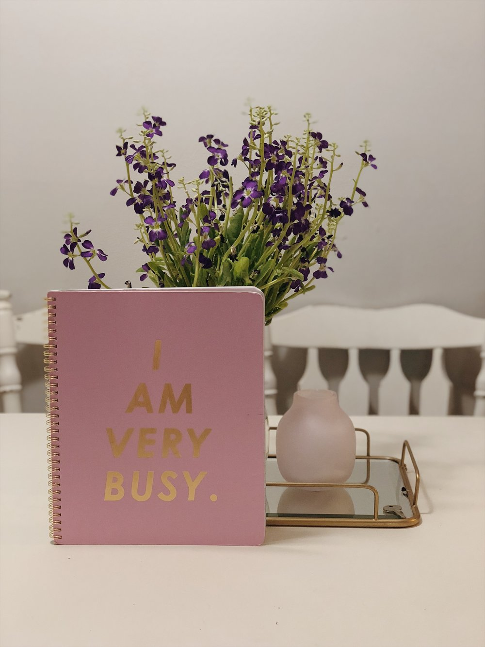 NOTEBOOK VIBES - Soooo ide do anything for a cute notebook. Click here to shop this notebook.