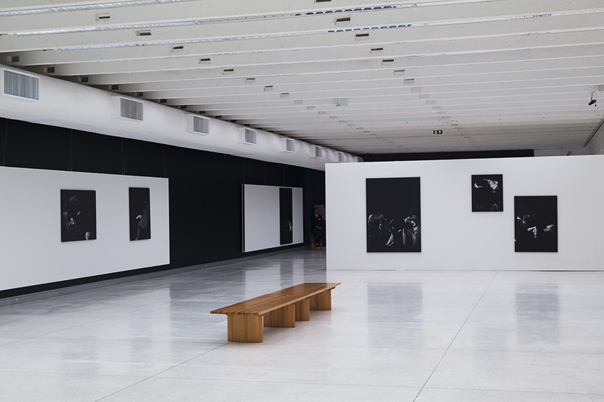 Exhibition View, Manoel Veiga