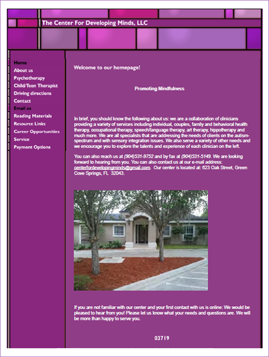 The Center for Developing Minds: Original Website Design