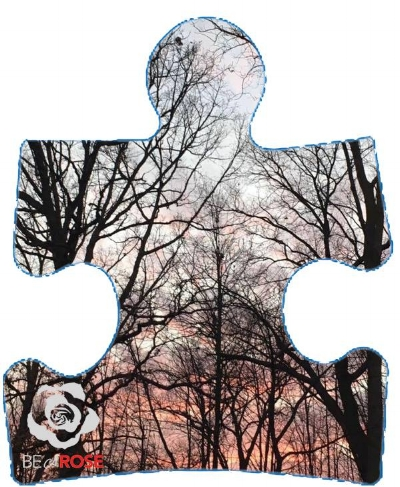Image Source :  Original collaboration between Be a Rose Communications Manager Aanee Kai & Photographer  Precious Dandridge .   Image History:  On a nationwide level, the Puzzle Piece symbol reflects the mystery and complexity of Autism Spectrum Disorder (ASD). Also, since every puzzle piece is different in some way, a puzzle piece accurately represents the diversity of the individuals affected.