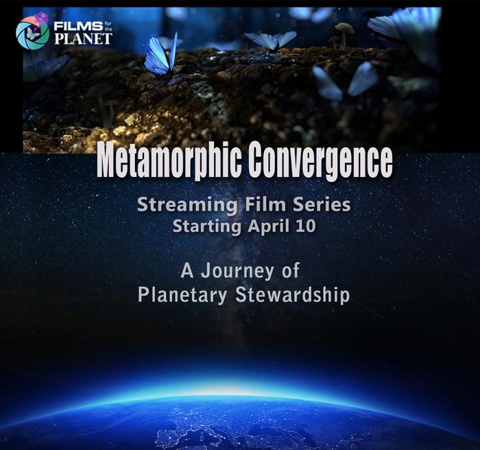 MetamorphicConvergence.jpg