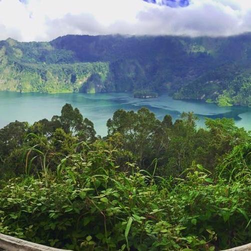 Beautiful Rain Forests