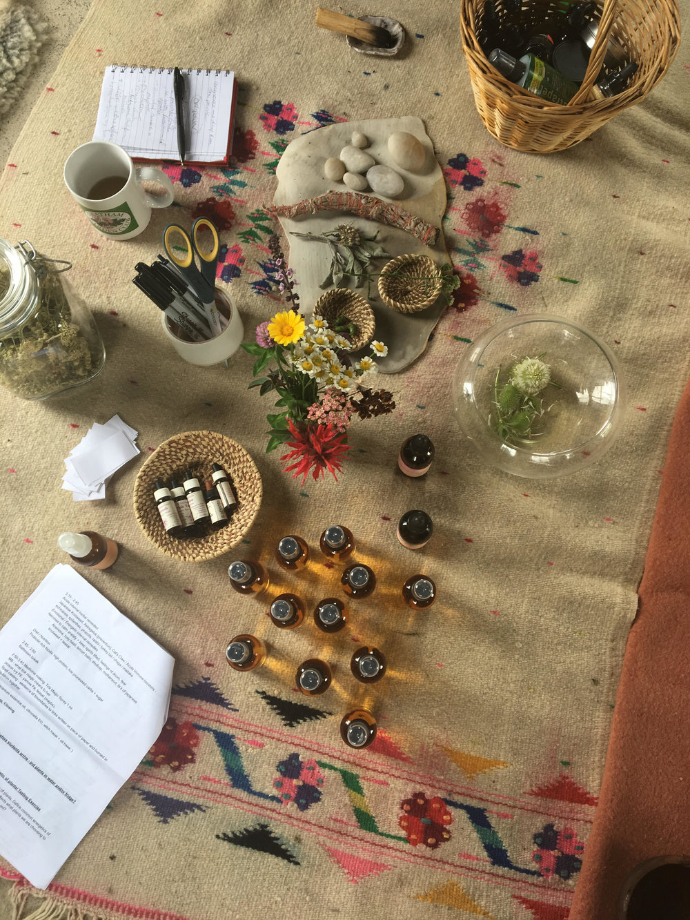 winter workshops  - Th 1/11 6-8pm :: Herbal Care for the Home Team at Good Fight Herb Co. herb shop ~ 253 1/2 warren st., hudson, nyGather your squad - be it family (of origin, chosen), your collective house, domestic partners, etc. - and participate in a down home, approachable way to take care of each other with herbs. We'll cultivate tools to promote our agency and self-determination on how we choose to take care. We'll unpack first aid assessment and make medicine that relates to everyday situations.  We'll break down emotional labor, holding space for ourselves and the team, and practice tools for creating healthy boundaries. We'll decipher ways we can carve out time for care, and how to engage in this intimacy so that our squad goals are on point! $65 ; RSVP