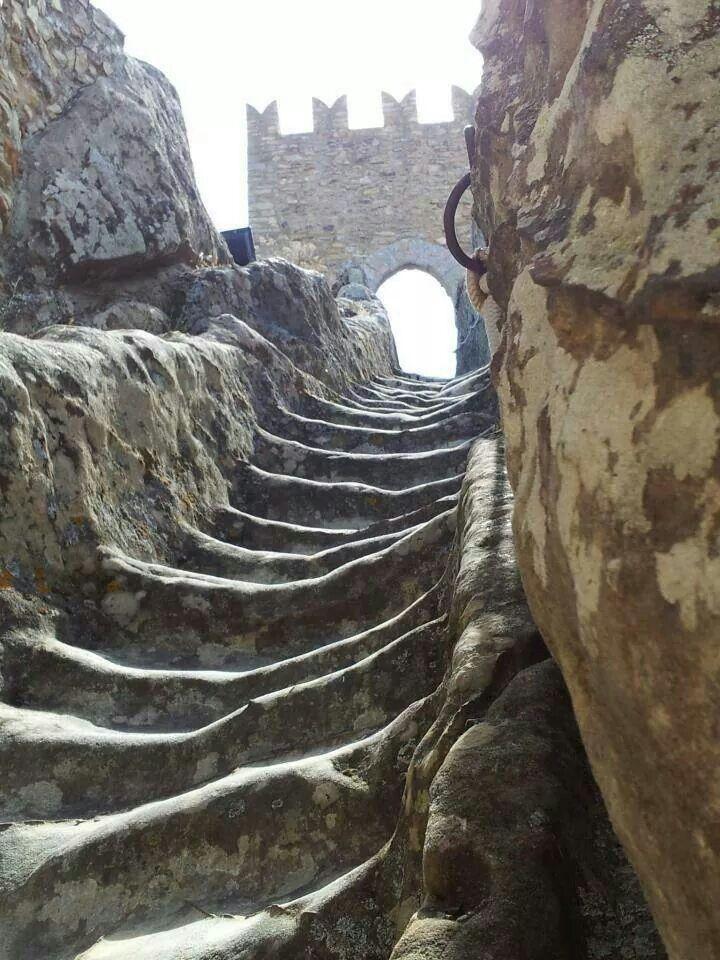 Sperlinger Castle Steps. https://s-media-cache-ak0.pinimg.com/736x/71/5b/0b/715b0ba7eeaf30a1b888d7325a49b2aa.jpg