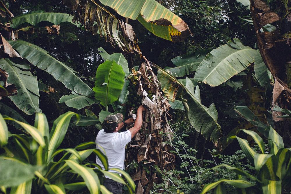 Travel-Nicaragua-3.jpg