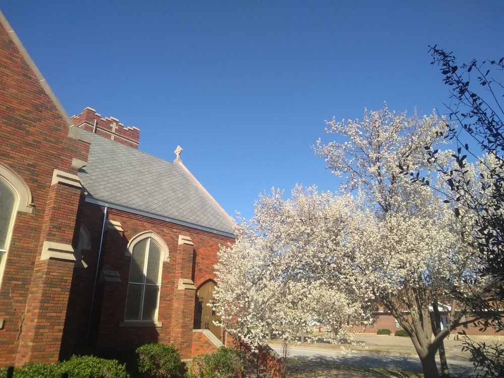 Spring has come to Church of the Good Shepherd! Behind our pear tree in full-bloom is our beautiful church, and behind that—those characteristic blue skies for which Wichita Falls is renowned.