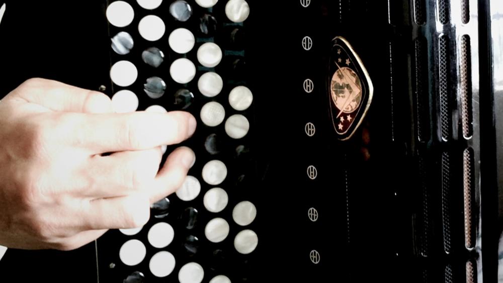 ALFA#1_accordion2.png