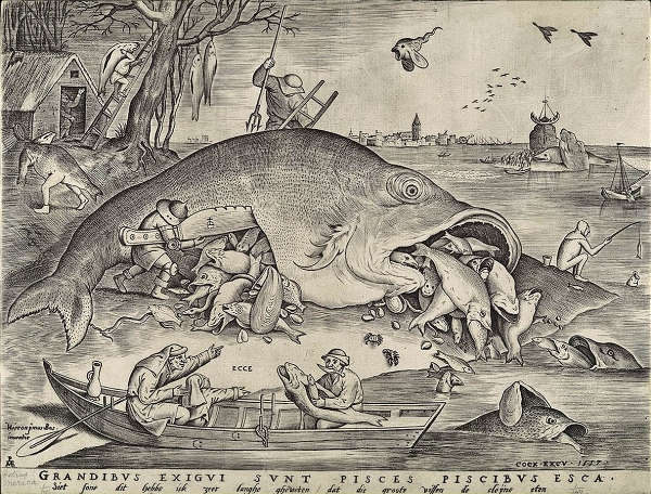 Bruegel big fish.jpg