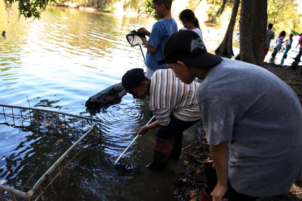 acuático - Los estudiantes exploran la comunidad acuática con las herramientas de los científicos en nuestro ' laboratorio al aire libre, ' recolectando organismos para la observación con un enfoque en las cadenas alimenticias y adaptaciones.
