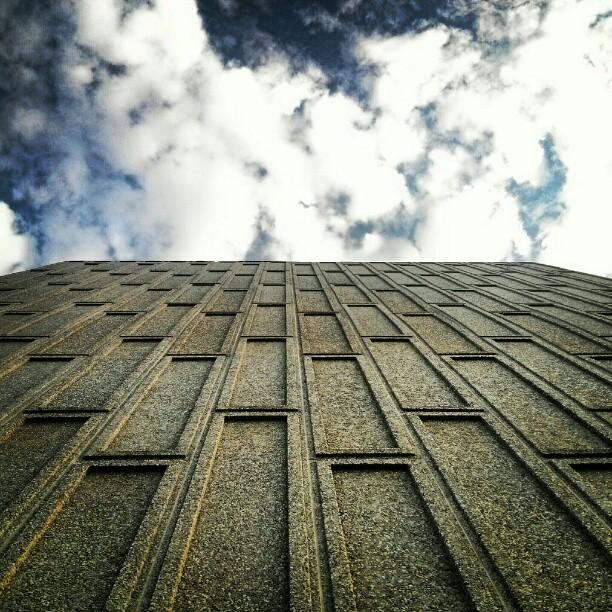 look up.jpg