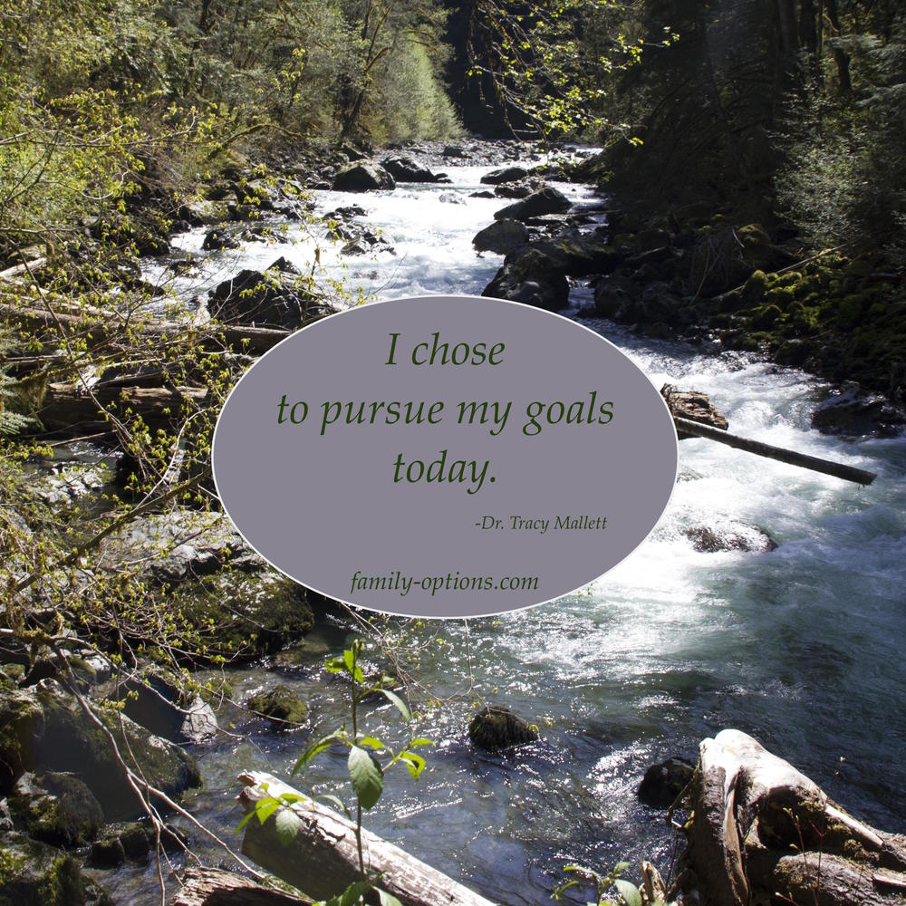 Pursuing goals
