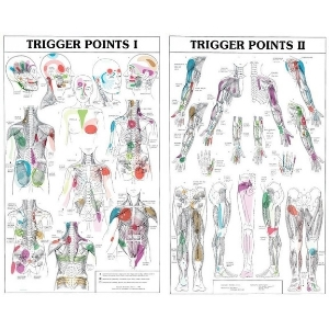 Trigger-Point-Medical-Massage