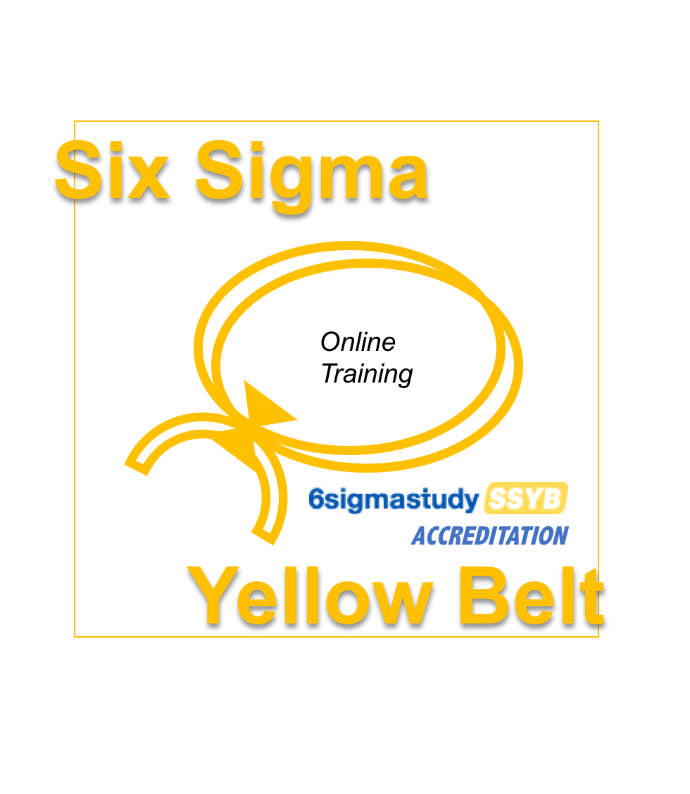 B2lo Shop Consulting Yellow Belt Training Certification