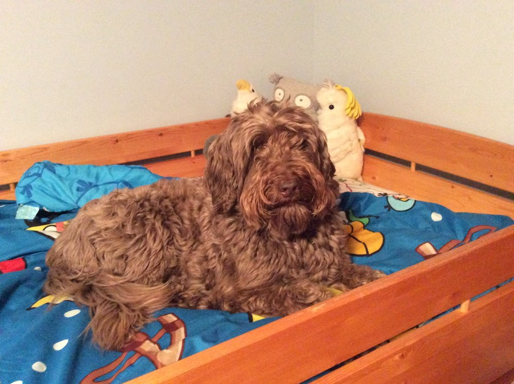 Is it bedtime yet?