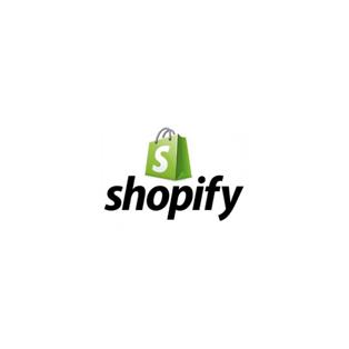 shopify-bag.jpg.png
