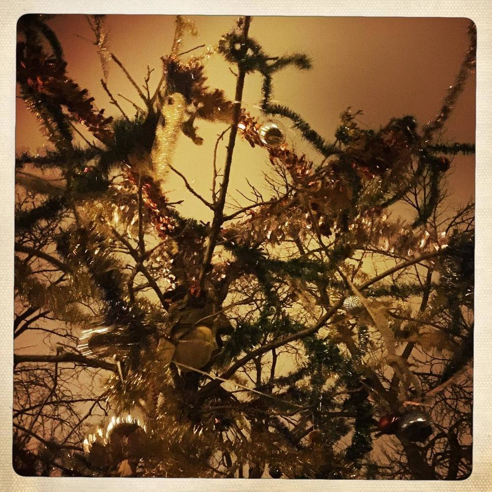 Day 13: mystery tree revisited.