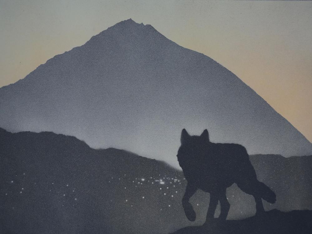 Lone Wolf 2   18x24