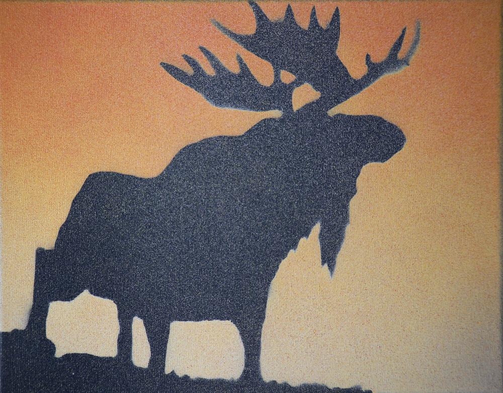 Moose 1  8x10
