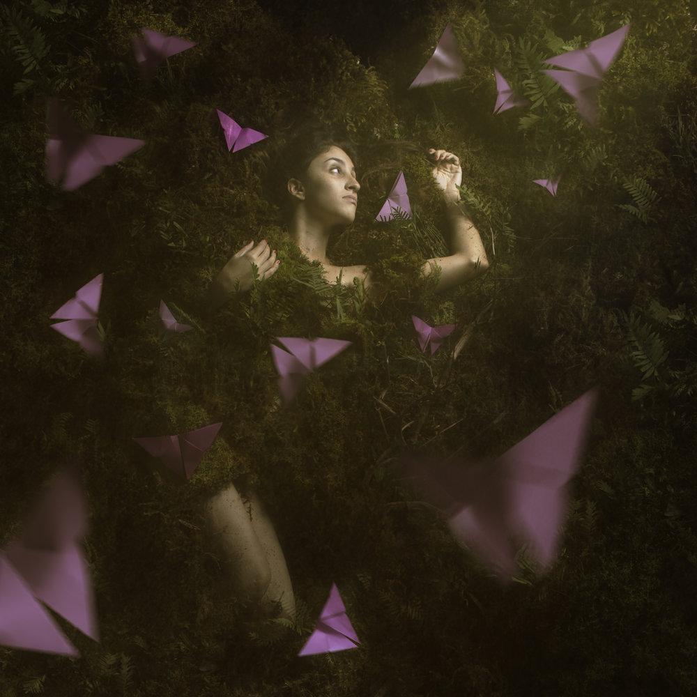 rociovillanueva bosque mariposas origami 2 72.jpg