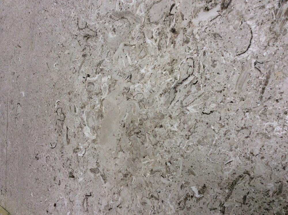 Fiori Limestone