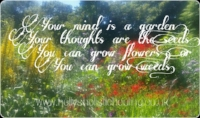 Your mind is a garden your thoughts are the seeds, you can grow flowers, or you can grow weeds ~ Blog Post by Holly Charles ~ www.hollysholistichealing.co.uk