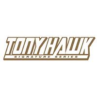 tonyhawk_signatureseries_logo-300x83.jpg