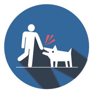 <p>Dog Bites</p>