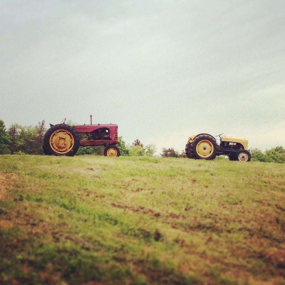 our vintage tractor fleet