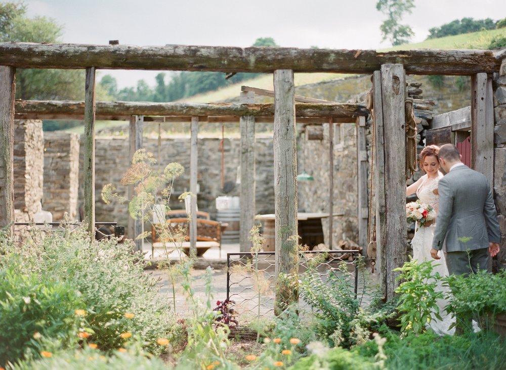 looking through the herb garden
