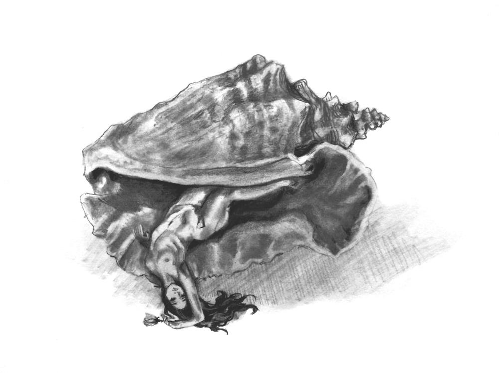 Conch c.2015