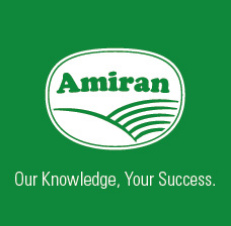 Amiran Kenya is our agricultural partner in Kenya. Their greenhouse project in the Loosupulai Well community provides vegetables for sale and consumption.