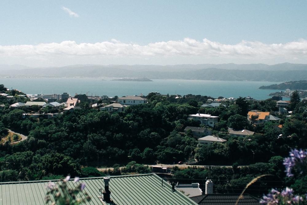 201502_Wellington-098.jpg