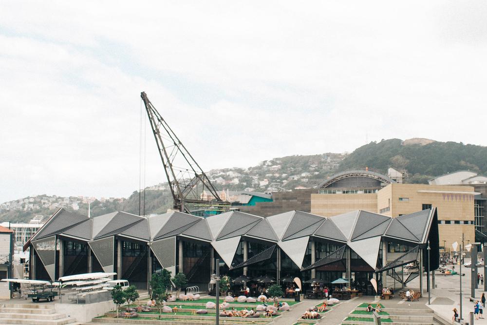 201502_Wellington-126.jpg