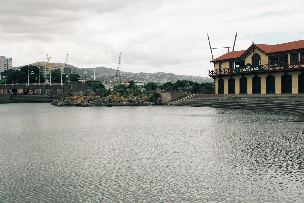 201502_Wellington-133.jpg