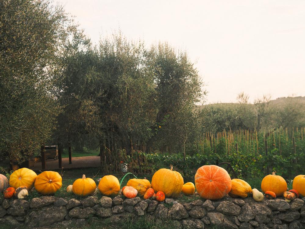 201509_Italy-647.jpg