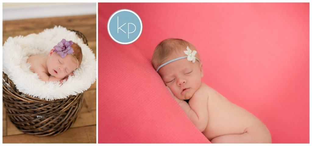 Girl Newborn Portraits