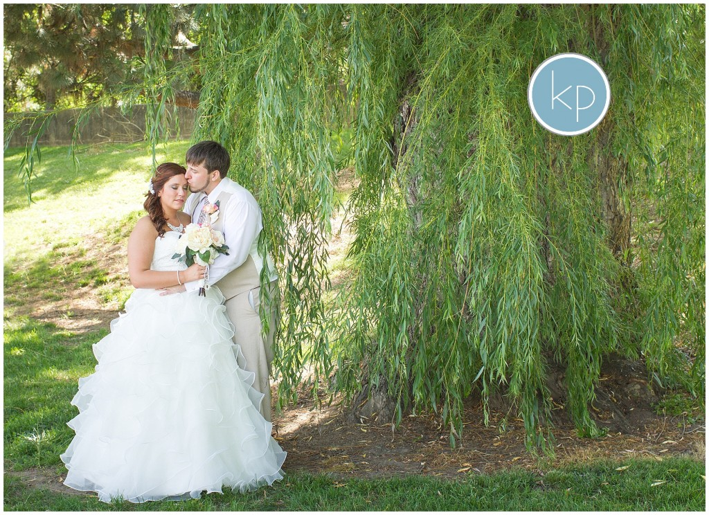 bride and groom in willows