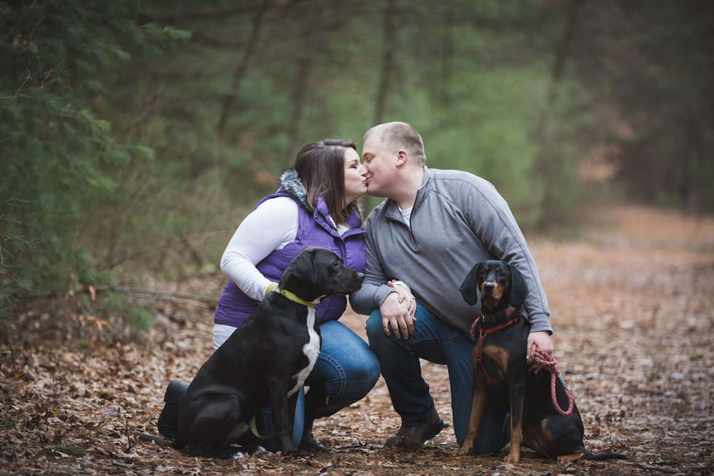 engagement portraits with dogs in davison michigan