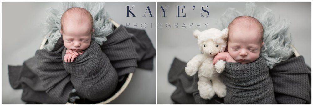 Newborn boy during professional baby photos holding lamb in a basket