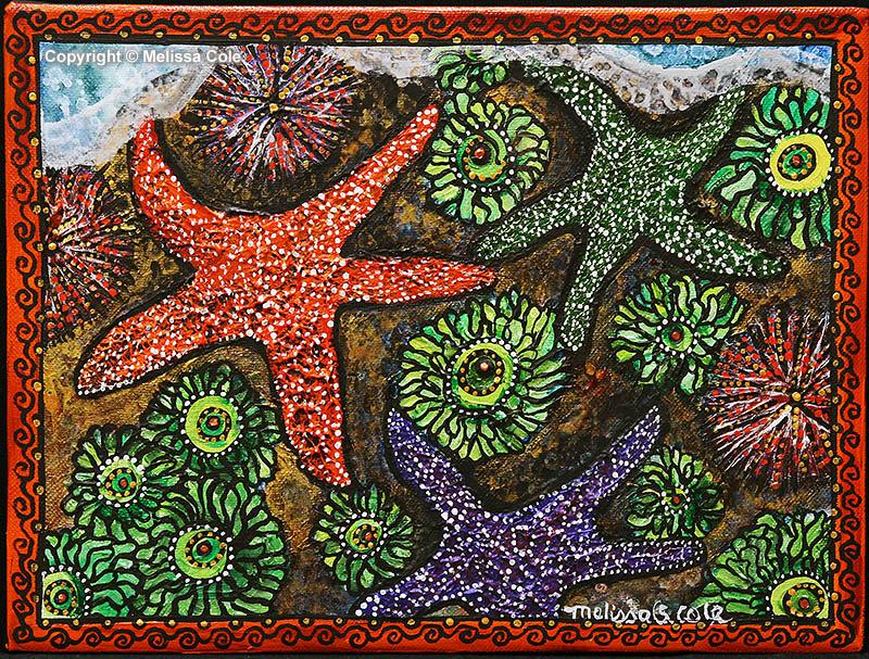 STAR-14_MagicCarpet_Copyright_Melissa_Cole
