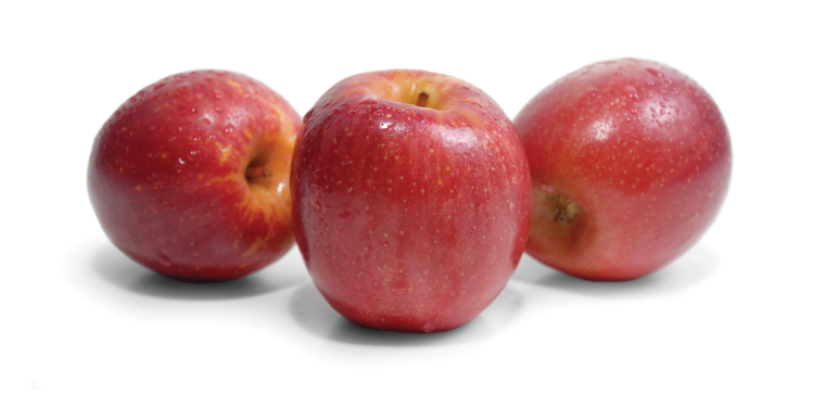 Apples auvil fruit company premium fruit grower fuji apples are a late fall apple harvested from late to mid november they are typically a blush red color with a yellow background voltagebd Gallery