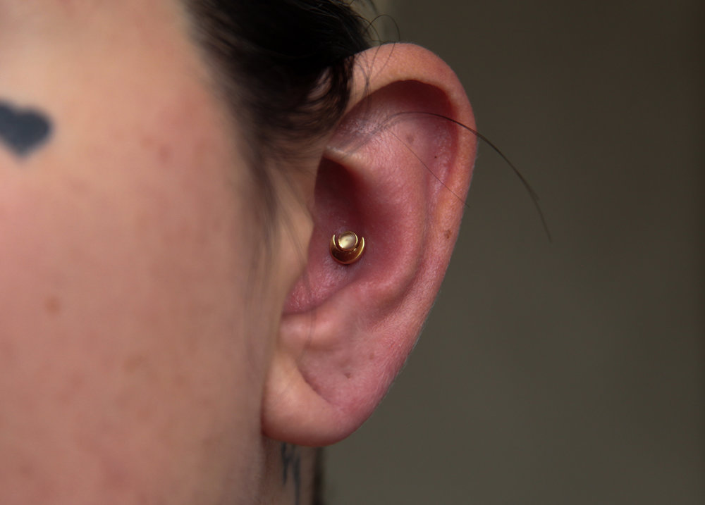 Conch Piercing  - Conch piercings are located in the bowl-shaped portion of the ear adjacent to the ear canal. This placement gives the piercee a ton of options for jewelry, given the sheer amount of workable space. Conch piercings have a 6 to 9 month healing time.