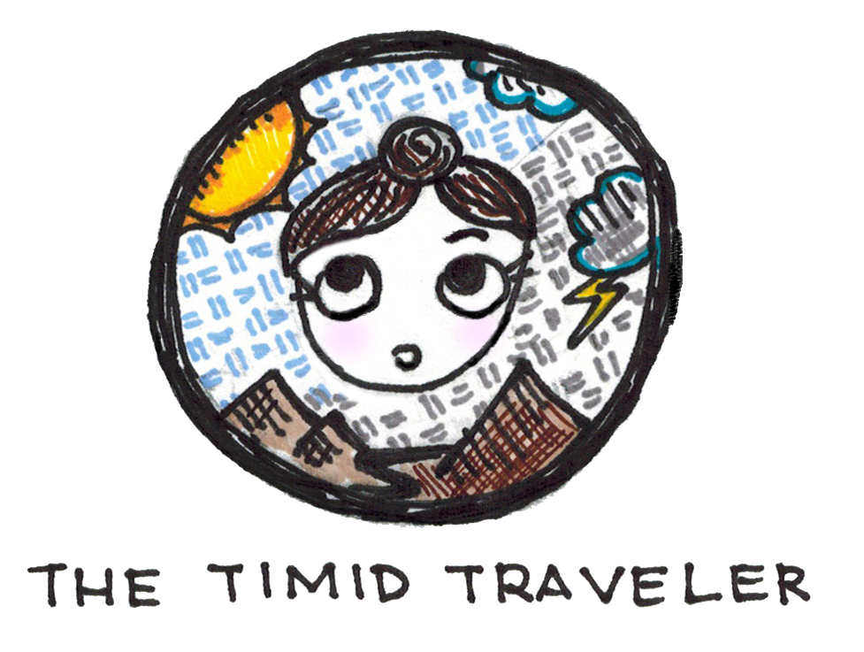 The Timid Traveler